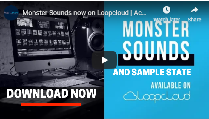 loopcloud sample